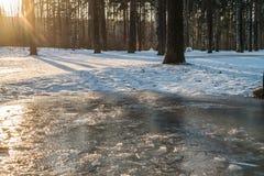 Gefrorener Bach im Wald am sonnigen Tag des Winters Lizenzfreies Stockbild
