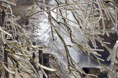 Gefrorener Baum entlang dem Wandern des Pfades im Winter Lizenzfreie Stockfotos