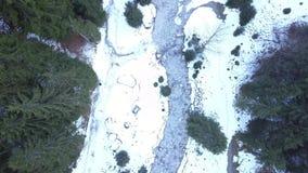 Gefrorener Fluss in der Waldvogelperspektive stock footage