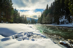 Gefrorener Fluss im Wald Stockbild