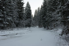 Gefrorener Fluss im Winterwald Stockfotos