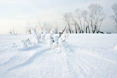 Gefrorener Fluss und Bäume im Winter Lizenzfreie Stockfotos