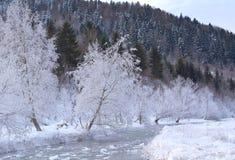 Gefrorener Fluss und Baum bedeckt mit Schnee Lizenzfreie Stockfotografie
