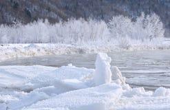 Gefrorener Fluss und Baum bedeckt mit Schnee Stockbilder
