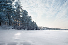 Gefrorener Fluss am Wald im schönen Winter Lizenzfreies Stockbild