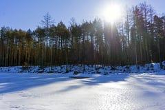 Gefrorener Frühlingsfluß mit einem Waldufer und einem hellen Sonnenschein, die durch die Niederlassungen scheinen Stockfotos