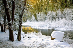 Gefrorener Merced Fluss, Yosemite, CA Stockfotografie