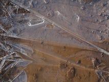 Gefrorener Pfützenhintergrund stockfotografie