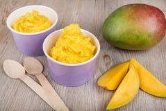 Gefrorener sahniger Eisjoghurt mit frischer Mango Stockfotografie