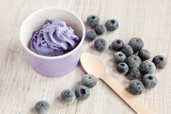Gefrorener sahniger Eisjoghurt mit ganzen Blaubeeren Stockfoto