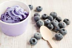 Gefrorener sahniger Eisjoghurt mit ganzen Blaubeeren Stockfotos