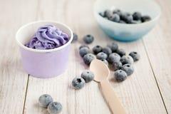 Gefrorener sahniger Eisjoghurt mit vollständigen Blaubeeren Lizenzfreies Stockbild