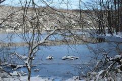 Gefrorener See, Burke Lake, Virginia lizenzfreie stockbilder