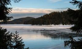 Gefrorener See im Kiefernwald lizenzfreie stockbilder