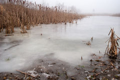 Gefrorener See im Winter stockfotografie