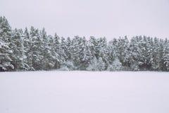 Gefrorener See, Schnee und kühles Wetter Lettland, Reisefoto Lizenzfreies Stockbild
