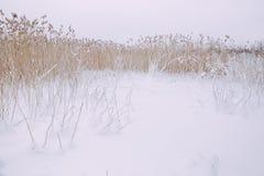 Gefrorener See, Schnee und kühles Wetter Lettland, Reisefoto Stockfotos