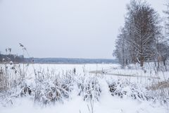 Gefrorener See, Schnee und kühles Wetter Lettland, Reisefoto Stockbild