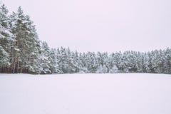 Gefrorener See, Schnee und kühles Wetter Lettland, Reisefoto Lizenzfreie Stockfotografie