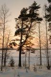 Gefrorener See Skandinavien-Winters Sonnenuntergang stockfoto