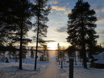 Gefrorener See am Sonnenuntergang lizenzfreie stockfotos
