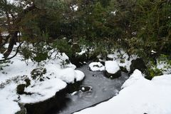 Gefrorener Teich im japanischen Garten Lizenzfreie Stockbilder