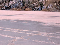 Gefrorener Teich Torontos hoher Park im Februar 2017 Lizenzfreie Stockfotografie