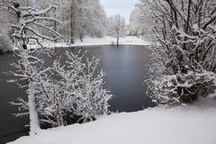 Gefrorener Teich, Wald mit Schnee Lizenzfreie Stockfotografie