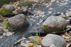 Gefrorener Wasserstrom unter den Steinen bedeckt mit Moos lizenzfreies stockbild