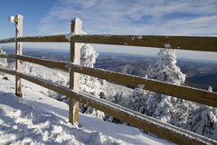 Gefrorener Zaun Stockbilder