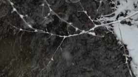 Gefrorener Zweig mit vielem Schnee hängt über druring Schneefällen des Gebirgsflusses stock video footage