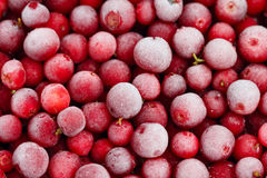 Gefrorenes Ñ- owberry Lizenzfreies Stockfoto
