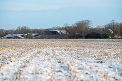 Gefrorenes Ackerland in der ländlichen niederländischen Landschaft Stockfotografie