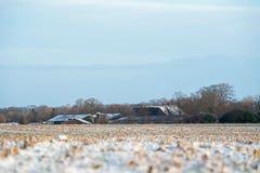 Gefrorenes Ackerland in der ländlichen niederländischen Landschaft Lizenzfreies Stockfoto