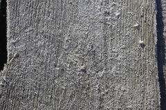 Gefrorenes altes Holz Stockfoto