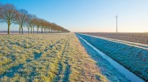 Gefrorenes Feld im Winter Lizenzfreies Stockfoto