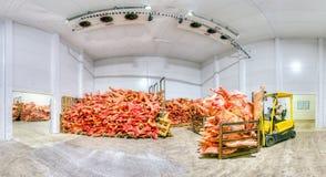 Gefrorenes Fleisch an einer Lagerung Stockfotografie