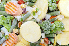 Gefrorenes Gemüse lizenzfreie stockbilder