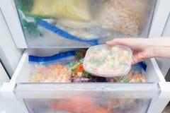 Gefrorenes Gemüse in einer Plastiktasche Gesundes Nahrungsmittelspeicherkonzept lizenzfreie stockfotos