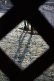 Gefrorenes Gras durch Gitter Stockfotografie