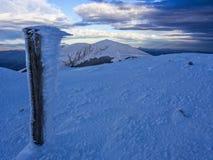 Gefrorenes hölzernes trunc mit galaverna nahe dem Gipfel des Bergs Catria im Winter bei Sonnenuntergang, Umbrien, Apennines, Ital Lizenzfreie Stockfotografie