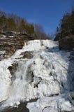Gefrorenes Hector Falls-Vertikalenbild Stockfoto