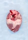 Gefrorenes Herz Stockbilder