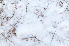 Gefrorenes Laub im Schnee-Hintergrund lizenzfreie stockfotos