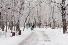 Gefrorenes Park City Lizenzfreies Stockbild