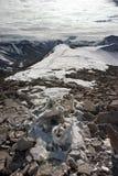 Gefrorenes Skelett des toten Rens in den Bergen Lizenzfreie Stockbilder