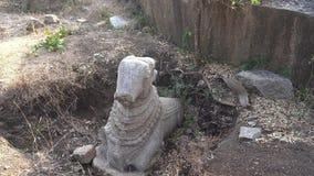 Gefundene Schatz Statue eines Stiers stock video