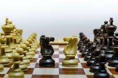 Gegenüberliegender Ritter auf einem Schachbrett Stockbilder