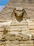 Gegenüberstellen der Sphinxes Stockbilder