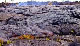 Gegenwärtige Lava auf der Erdoberfläche Flüssige Lava stockfotografie